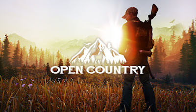 How to play Open Country with a VPN