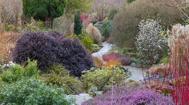 Bodnant Garden, del Jardín de Invierno al Laburnum Arch solo hay unos meses (y unos metros)