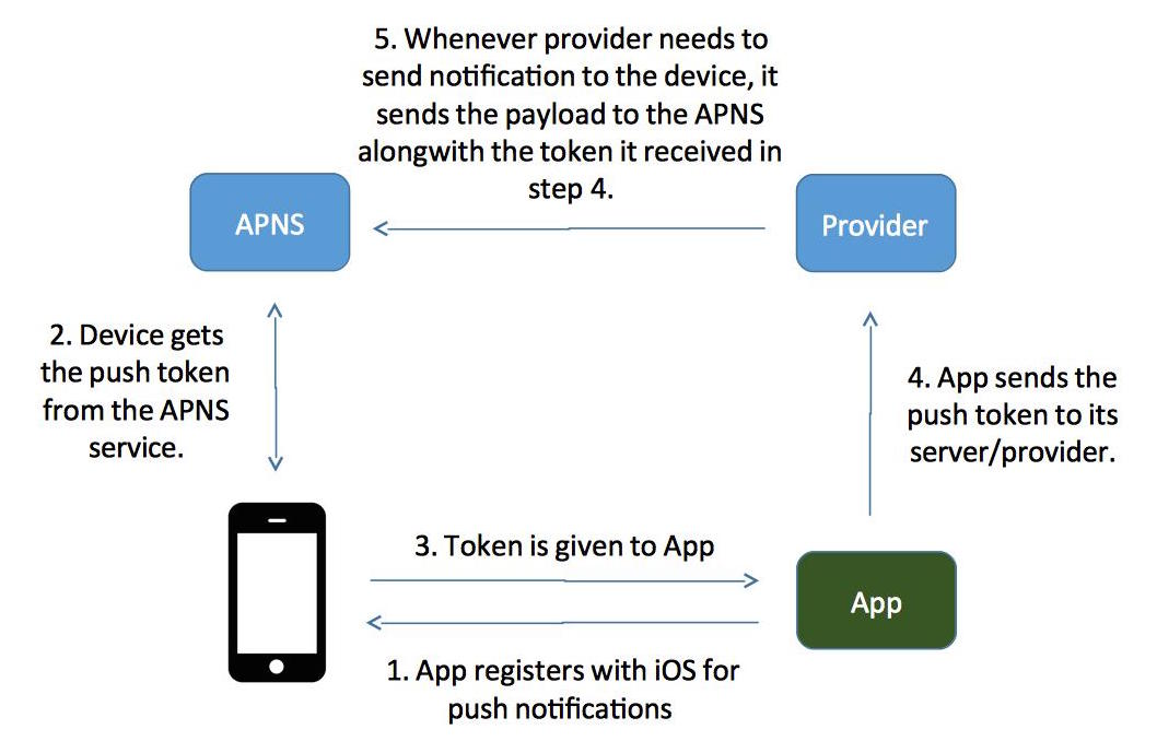 How Apple Push Notification Service(APNS) works in iOS 9 | Software