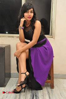 Telugu Actress Rachana Smith Stills at Money is Honey Audio Release  0095.jpg