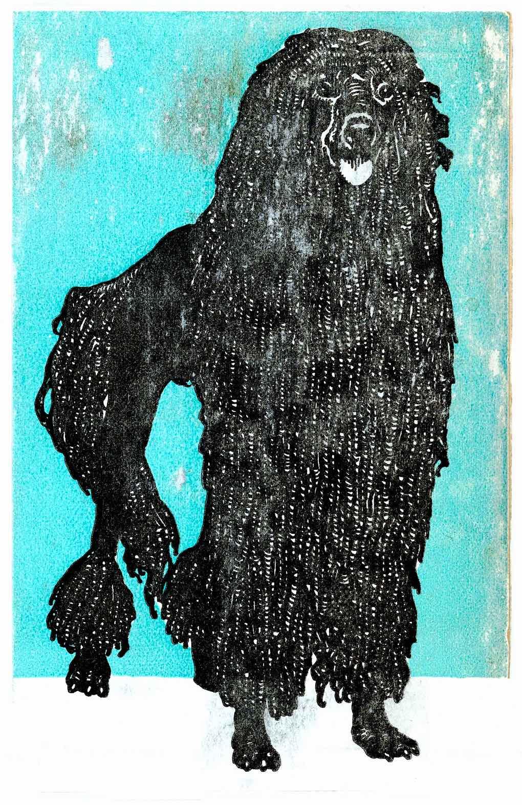 a 1912 Wiener Werkstätte postcard, a long haired black dog