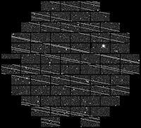 Fot. 1. Około 19 Starlinków zostało zarejestrowanych krótko po starcie w listopadzie 2019 roku przez detektor DECam zamontowany na 4-metrowym teleskopie Blanco w Cerro Tololo Inter-American Observatory (CTIO) przez astronomów Clarę Martinez-Vazquex i Cliffa Johnsona. Luki między ścieżkami satelitów wynikają z przerw między czipami CCD kamery DECam. Credit: NSF's National Optical-Infrared Astronomy Research Laboratory/CTIO/AURA/DELVE