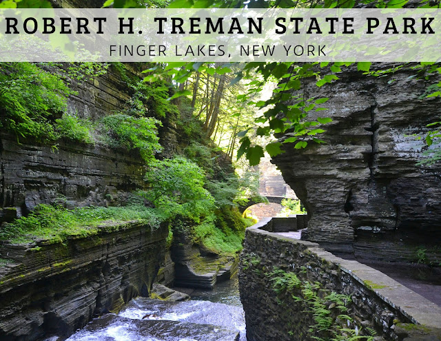 Gorge Trail Robert H. Trehman State Park Bridge
