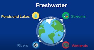 Types freshwater biomes
