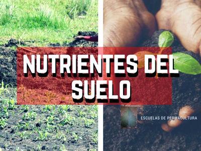 Los nutrientes del suelo aumenta el rendimiento de la microbioma del suelo