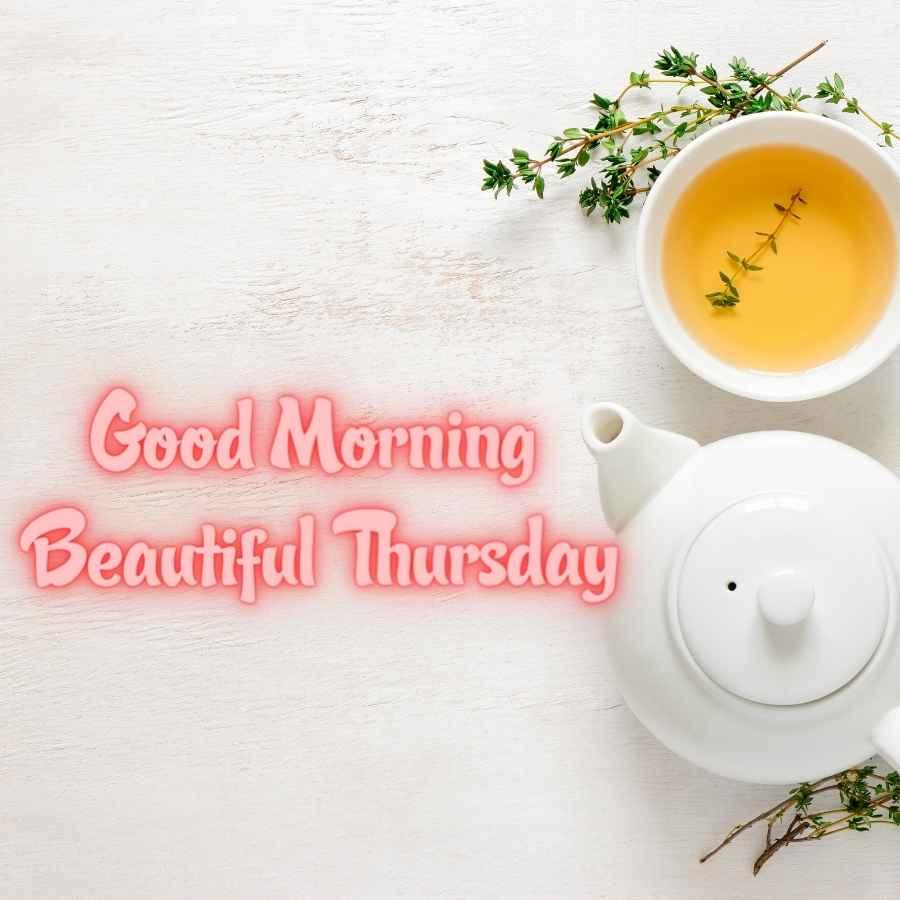 happy thursday good morning