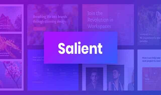 تحميل قالب ووردبريس Salient 13.0.1 مجانا