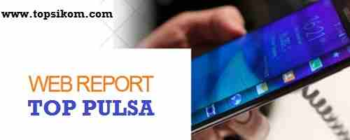 web report server pulsa