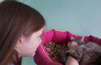 Самарский детский эколого-биологический центр: будь здорова, кошечка!
