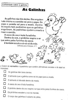 Leitura as galinhas
