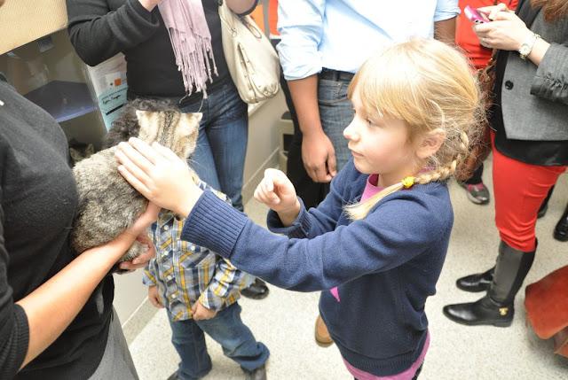 Happyhowlidays To All Animals Visit To My Local Aspca