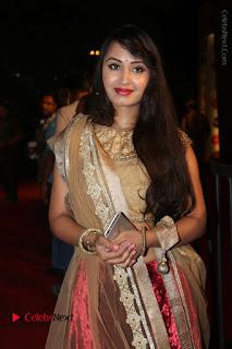 Actress Vennela Stills in Lehenga Choli at Gemini TV Puraskaralu 2016 Event  0020.JPG