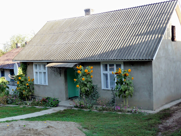 Великоселье, Герцаевский район, Черновицкая область. Буковинский дом старой постройки