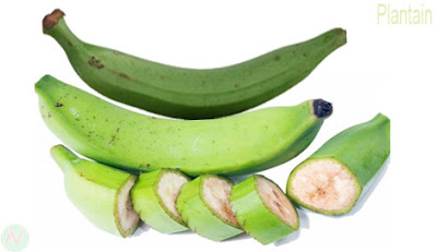 কাঁচা কলা; Plantain; Green bananas; Cooking banaba; 芭蕉; Plátano