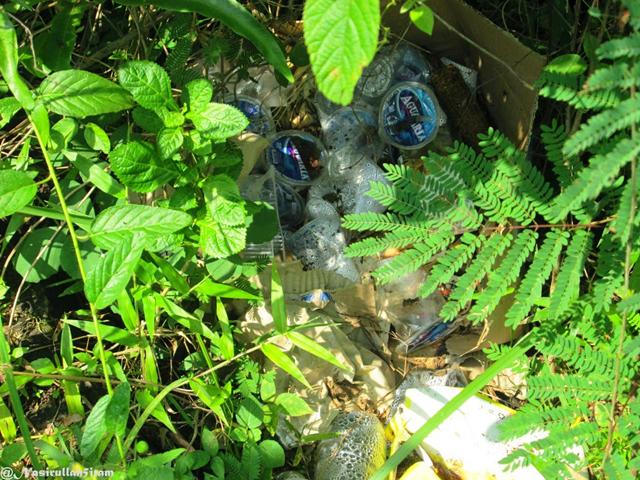 Sampah air mineral di antara semak-semak