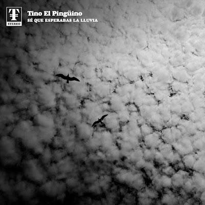 Single: Tino El Pingüino - Sé Que Esperabas La Lluvia [2018]