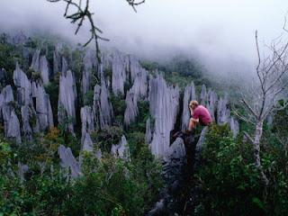 7 Tempat Wisata Di Malaysia yang Menarik yang Bisa Anda Kunjungi
