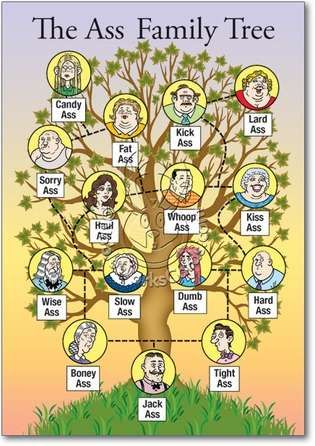 The Ass family tree...