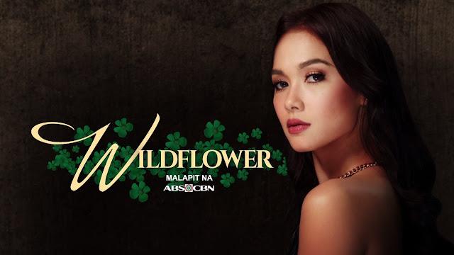 Wildflower Pinoy TV Replay