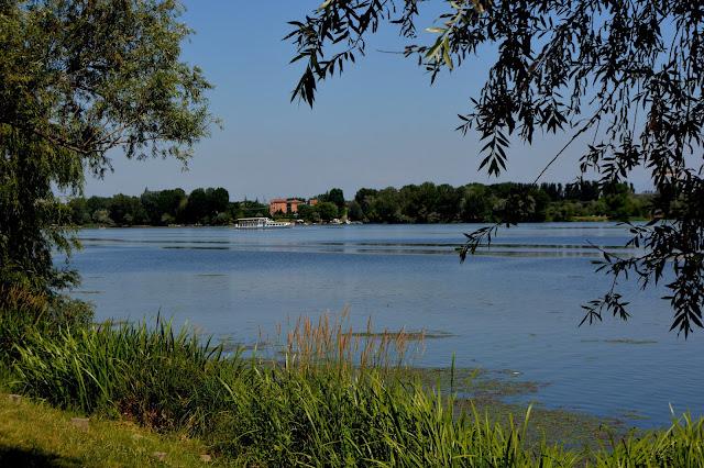 Mantova-parco-natura-Parco del Mincio-acqua