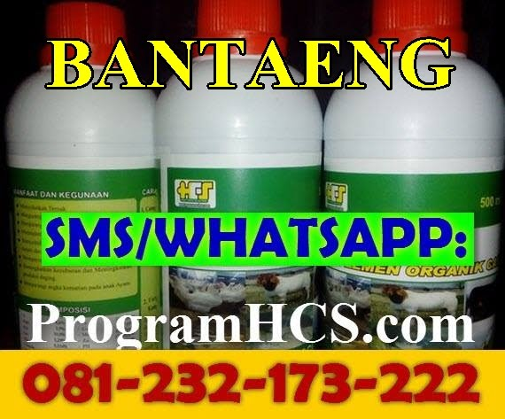 Jual SOC HCS Bantaeng