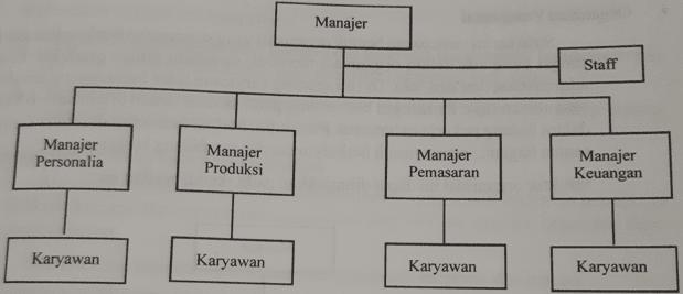 Skema struktur oraganisasi garis dan staf