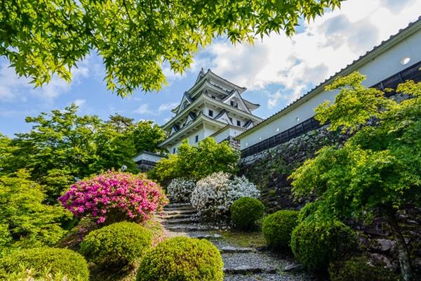 ปราสาทกุโจฮาจิมัง (Gujo Hachiman Castle: 郡上八幡城)