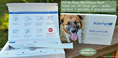 wisdom panel dna kit for dogs