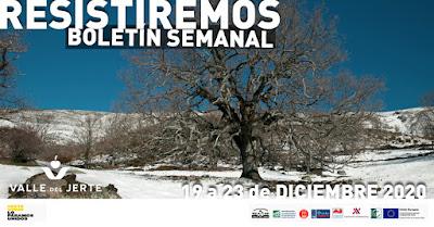 VALLE DEL JERTE, BOLETÍN SEMANAL (19 a 23 diciembre 2020)