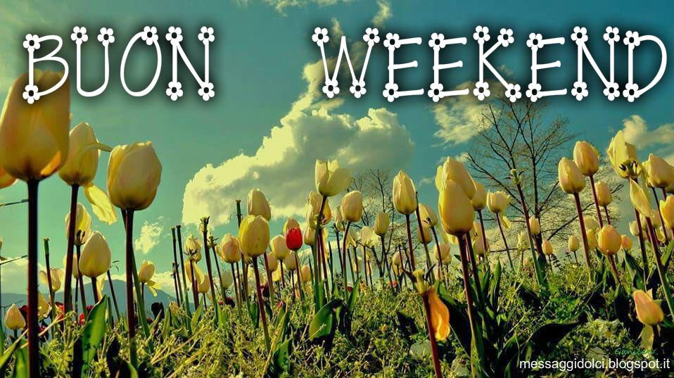 Frasi auguri fine di settimana messaggi dolci for Buon weekend immagini simpatiche
