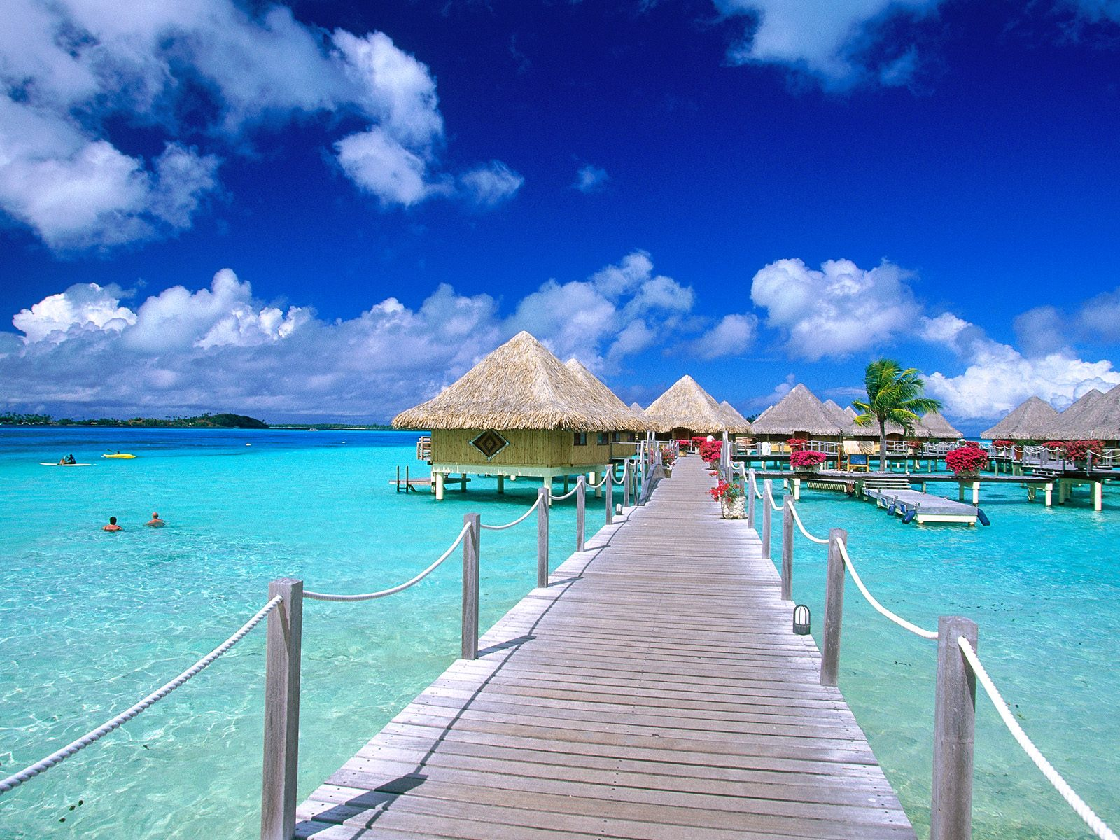 Travel Trip Journey : Maldives