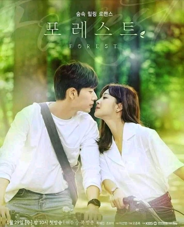 Download Drakor Forest Eps. 1-32 Kualitas HD Sub Indonesia