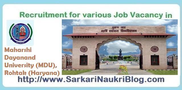 Naukri-Vacancy-Recruitment-MDU-Rohtak