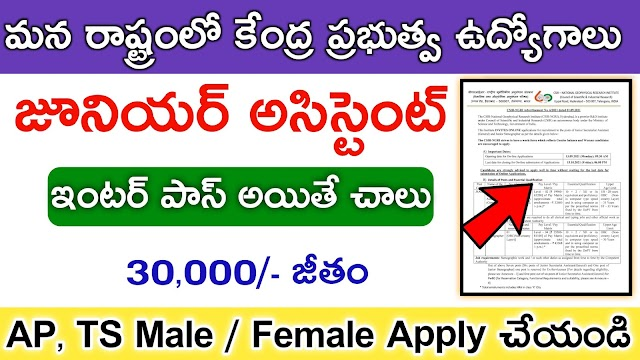 Junior Assistant and Stenographer jobs Notification 2021   Latest jobs Notification in AP   central govt jobs Notification 2021