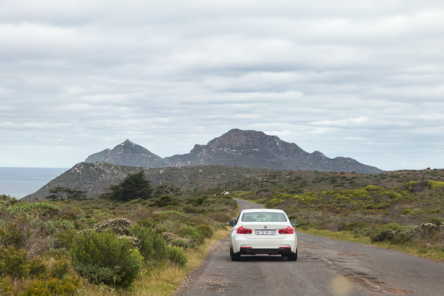 Carretera del Cabo de Buena Esperanza, Península del Cabo, Sudáfrica