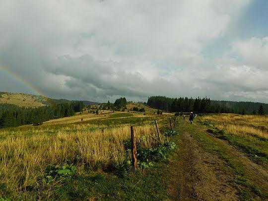 Droga na Przełęcz Semenczuka.