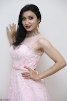 Sakshi Kakkar in beautiful light pink gown at Idem Deyyam music launch ~ Celebrities Exclusive Galleries 049.JPG