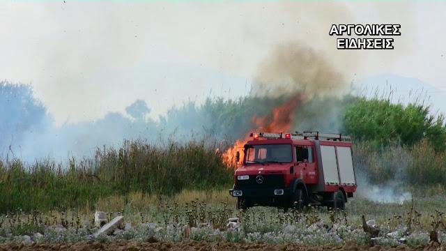 Αργολίδα: Πυρκαγιά στο Παναρίτη προς Νέο Ροεινό