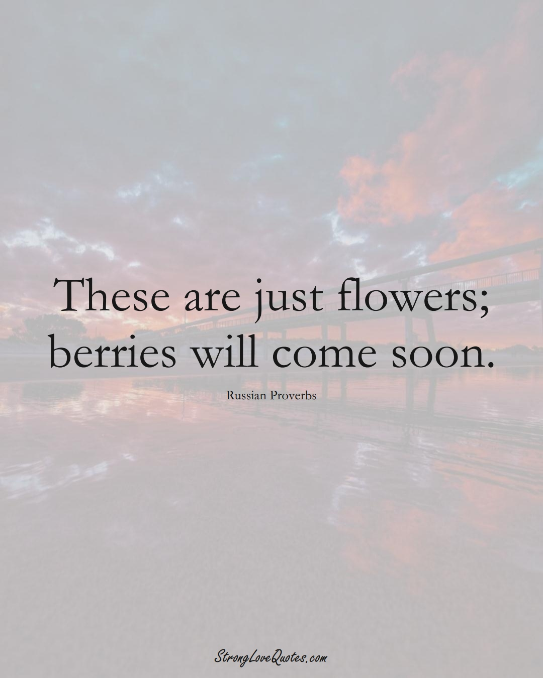 These are just flowers; berries will come soon. (Russian Sayings);  #AsianSayings