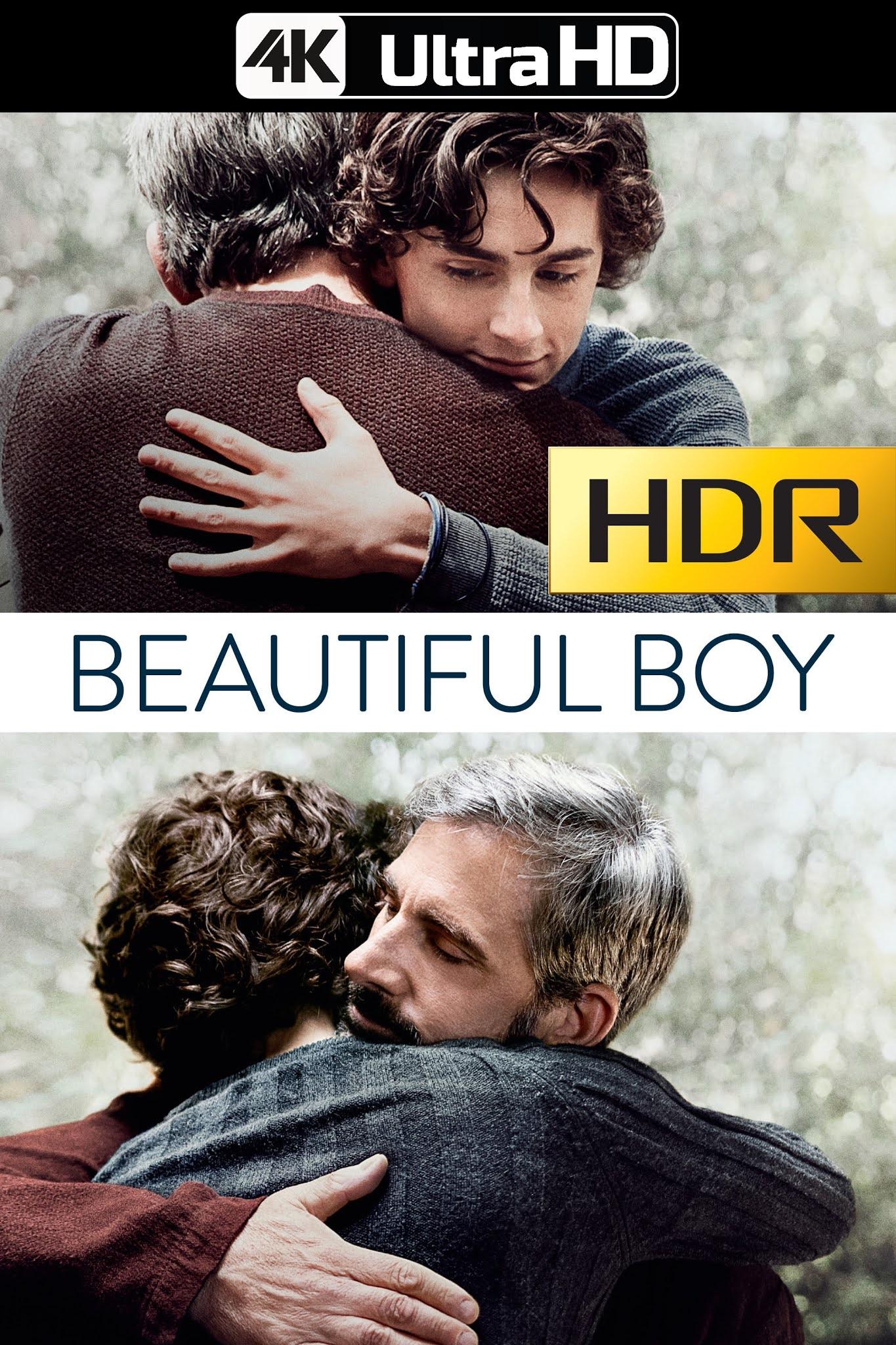 Beautiful Boy: Siempre Serás Mi Hijo (2018) 4K UHD HDR Web-DL Latino