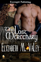 The Lost Mercenary (Book 3 of The Mercenary Tales)
