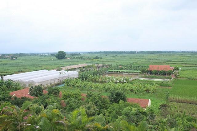 FLC Vĩnh Phúc Resort - Eco Farm 03