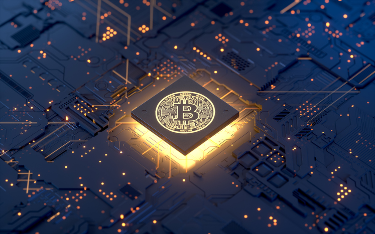 Planck's Principle and Hotelier Skepticism for Blockchain