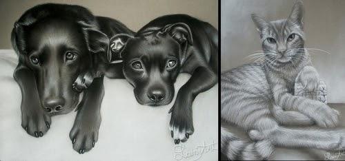 00-Alaina-Ferguson-Animal-Portraits-Cats-Dogs-and-a-Guinea-Pig