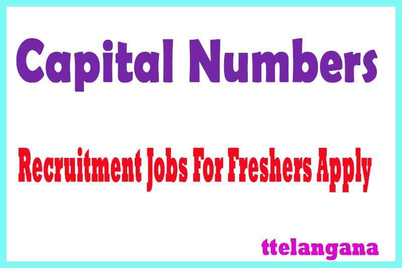 Capital Numbers Recruitment Jobs For Freshers Apply