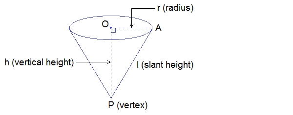 different parts of cone