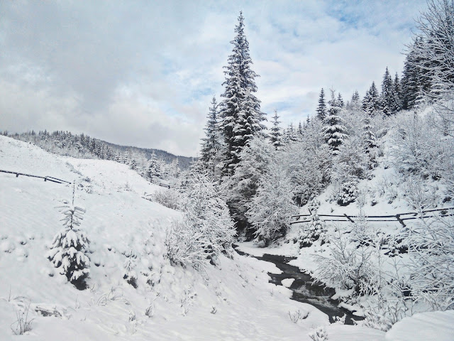 Winter in Bukovel