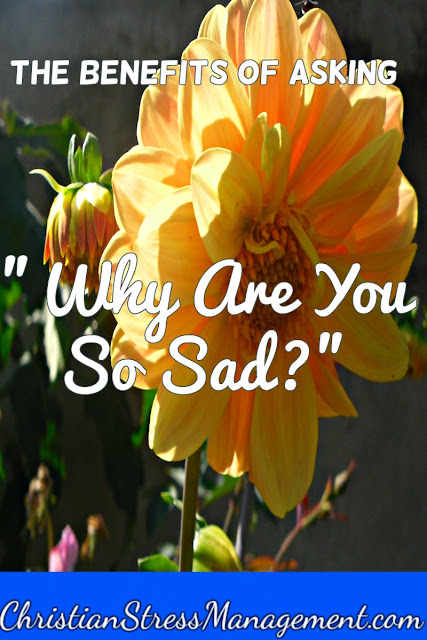 "The Benefits of Asking ""Why are you so sad?"""