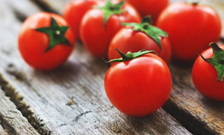 Tomat Matang