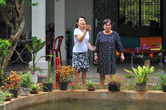 Trang trại sinh thái Làng Trường Thọ